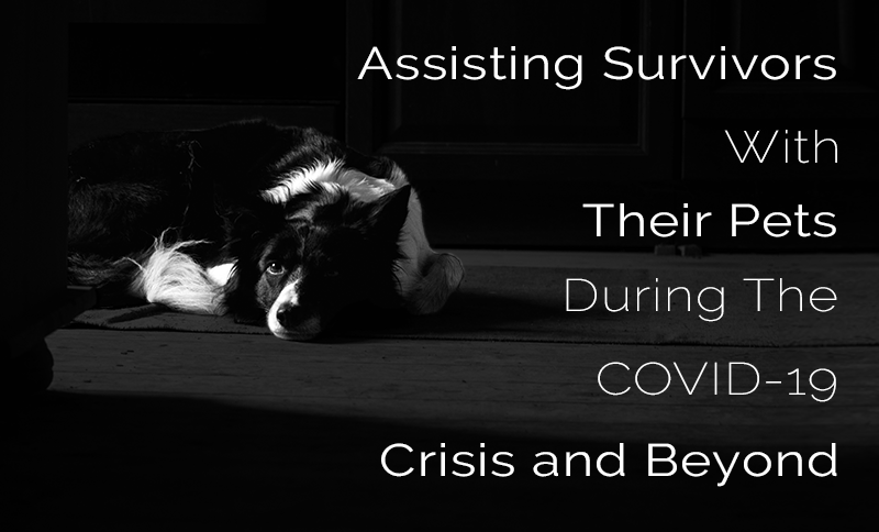 Assisting Survivors with Their Pets